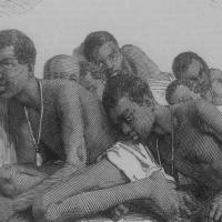 Mas Arubiano Afro-Indigeno mester skirbi tocante e pasado y presente di sclavitud na Aruba!